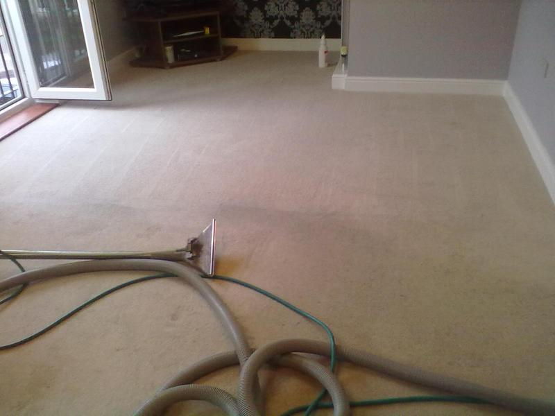 Image 57 - Cleaned by Creative Carpet Cleaners.