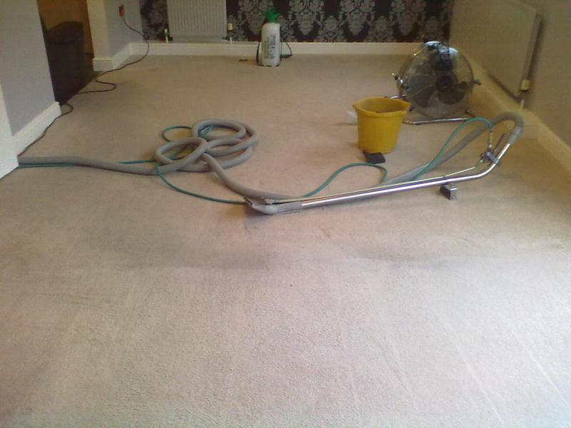 Image 25 - Cleaned by Creative Carpet Cleaners.
