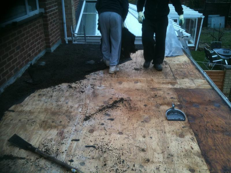 Image 4 - Extension flat roof, showing healthy boards under old felt