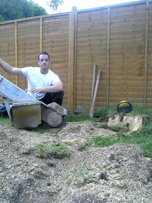 Image 2 - Stump removal, Medway