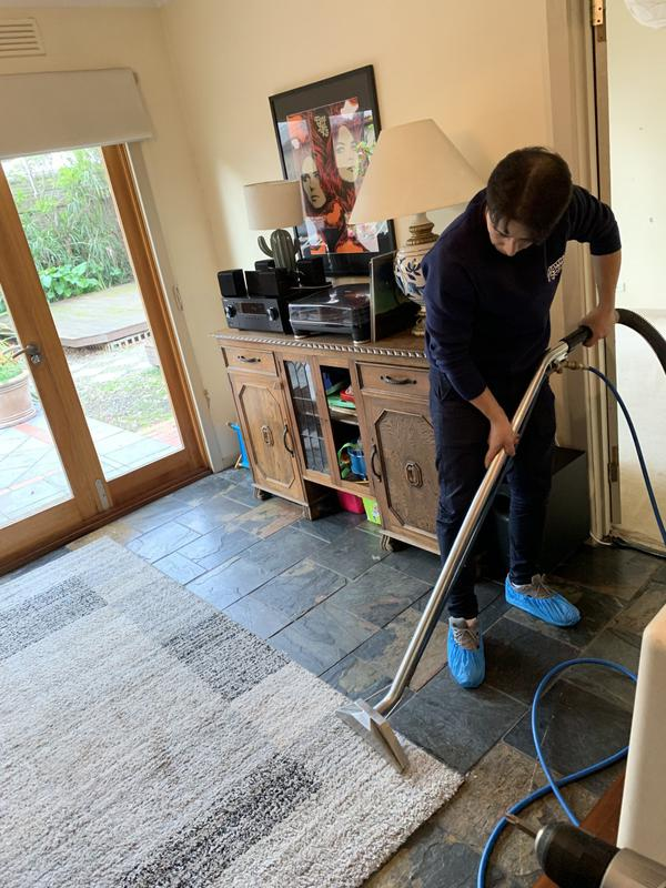 Image 1 - Professional rug cleaning
