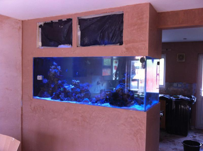 Image 22 - Here we have a very intricate plastering job. working around 10k's worth of marine equipment and fish! a great job well done.