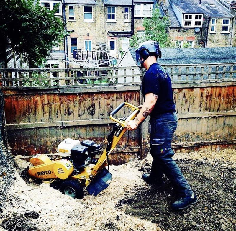 Image 26 - Stump grinding service available.