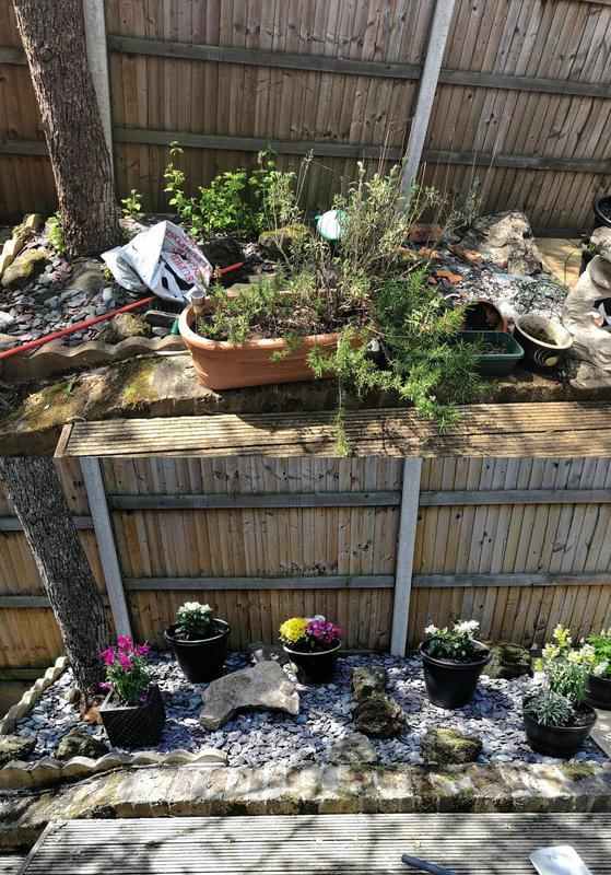 Image 13 - Garden Design