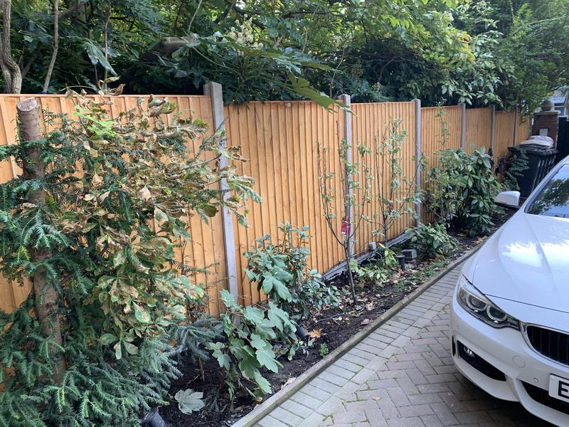 Image 53 - Fencing