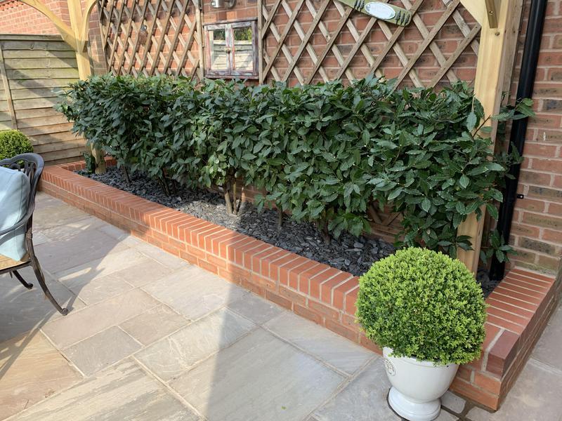 Image 36 - Brick raised planter flowerbed