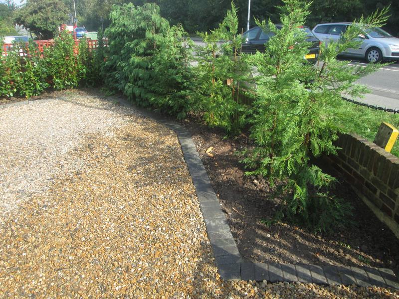 Image 56 - Tree plant and gravel laid