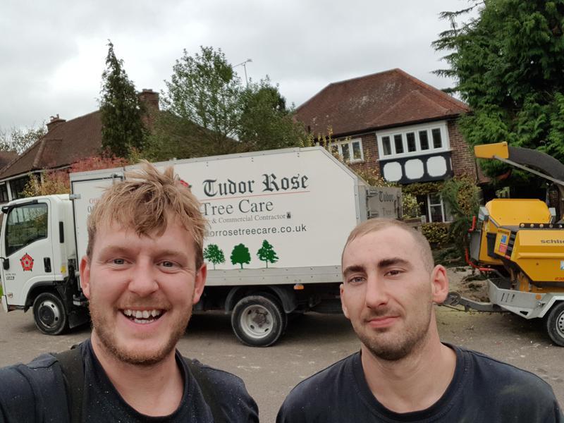 Image 8 - Tree services kent