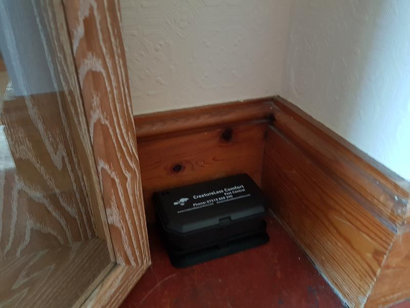 Image 5 - FREE rodent and insect monitoring for all businesses