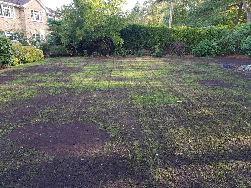 Image 50 - Following seed and top dressing