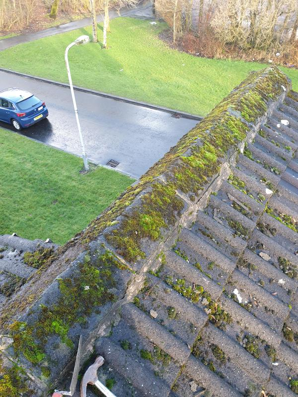 Image 4 - Ridge tiles to be cleaned of moss and old cement removed