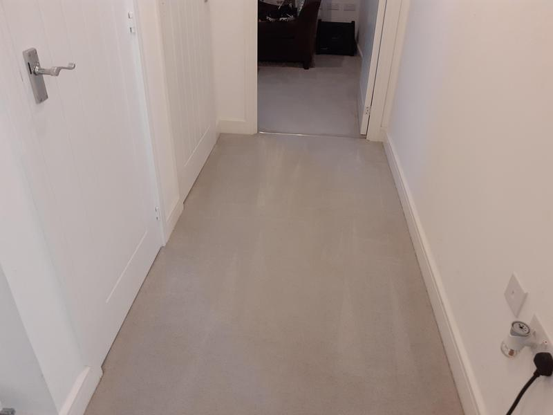 Image 8 - Carpet cleaning after