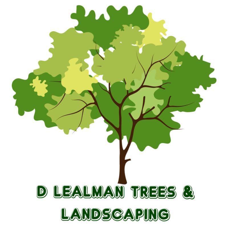 D Lealman Tree's & Landscaping logo