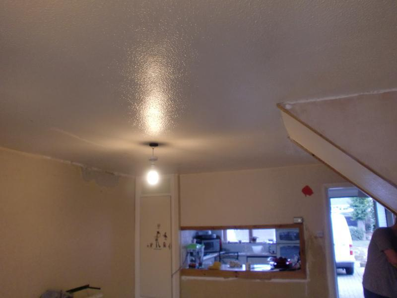 Image 38 - extensive lounge ceiling to be plastered
