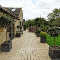 Image 8 - completed decking area with  potted olive trees, bay trees and topiary ball trees