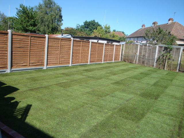 Image 17 - Artificial Grass