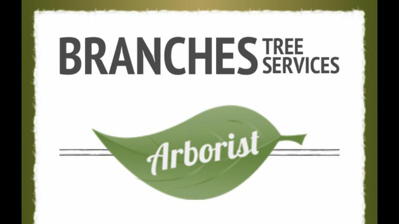 Branches Tree Services logo