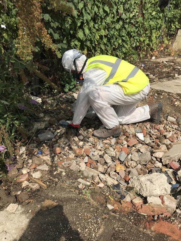 Image 24 - Environmental picking and rummaging