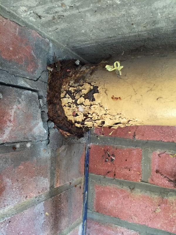 Image 18 - Faulty Gas Pipework 3 of 3