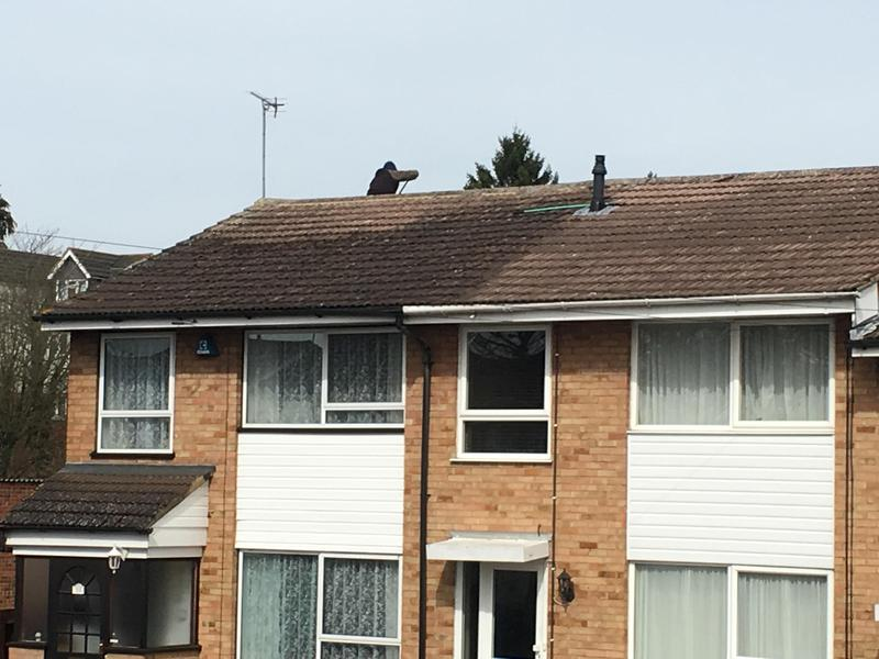 Image 20 - Roof cleaning by hand