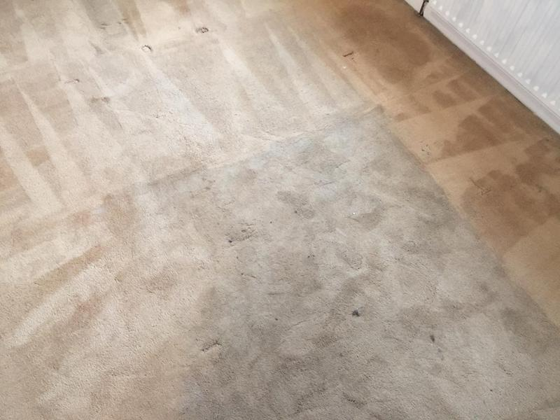 Image 24 - Carpet Cleaning Near Me