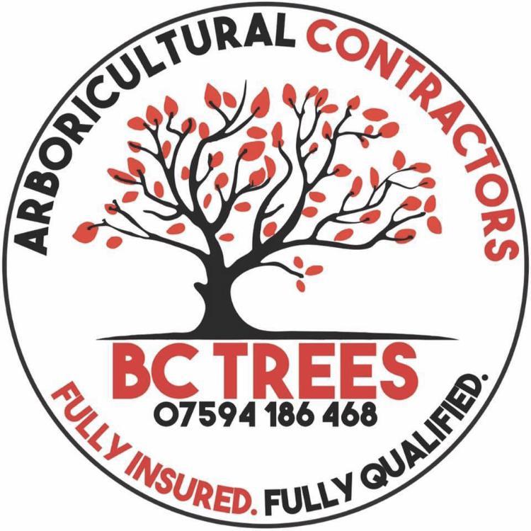 BC Trees logo