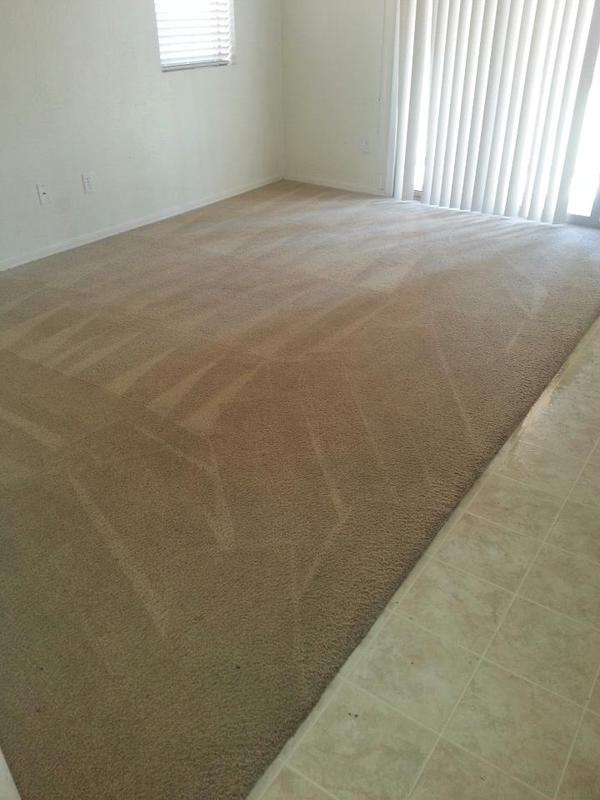 Image 2 - Carpet Cleaning Company