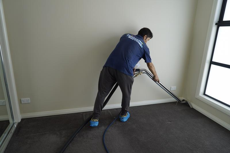 Image 6 - Professional carpet cleaning