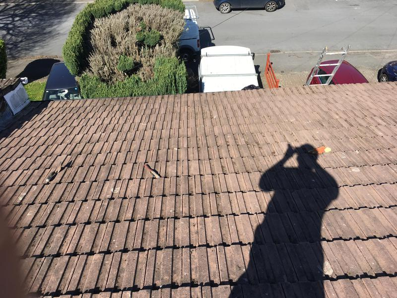 Image 19 - Roof cleaning by hand