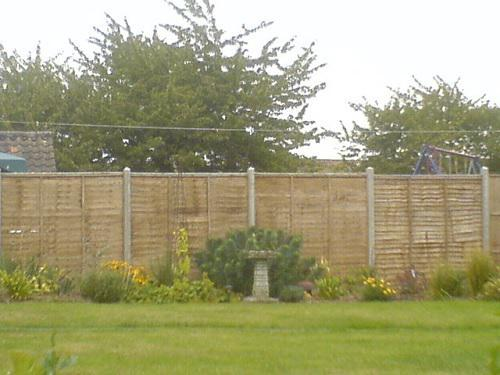 Image 12 - 6' panels with concrete posts