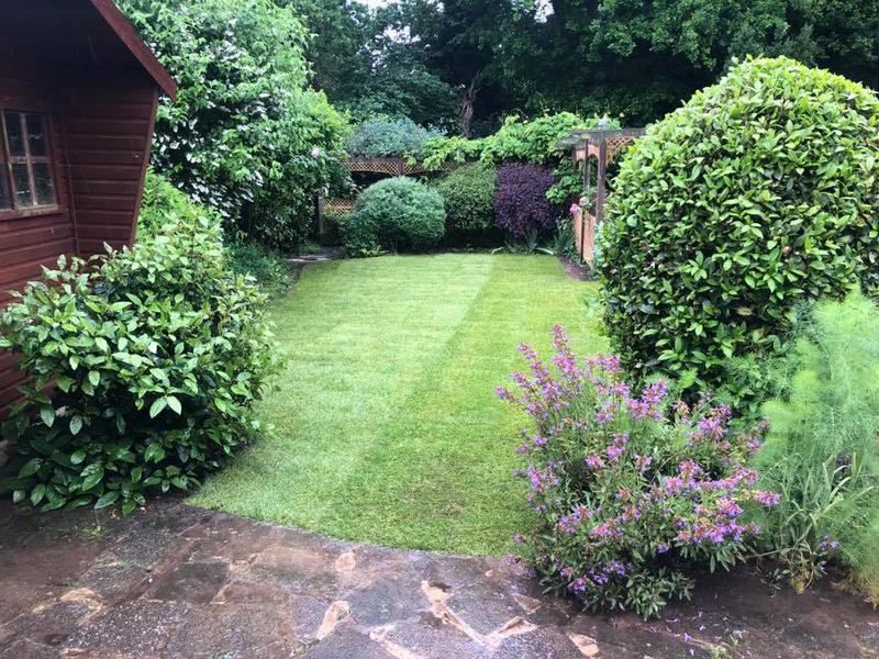 Image 7 - Lawn re turfed for one of our regular customers