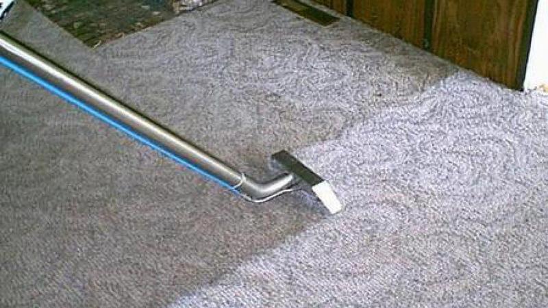 Image 3 - Carpet cleaning & sanitising (child & pet friendly)