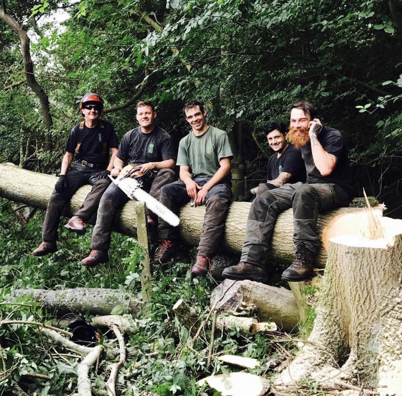 Image 29 - Taking a well deserved break. It was at team effort getting this tree where we wanted it to go!