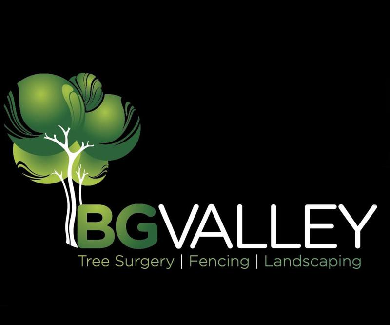 BG Valley logo