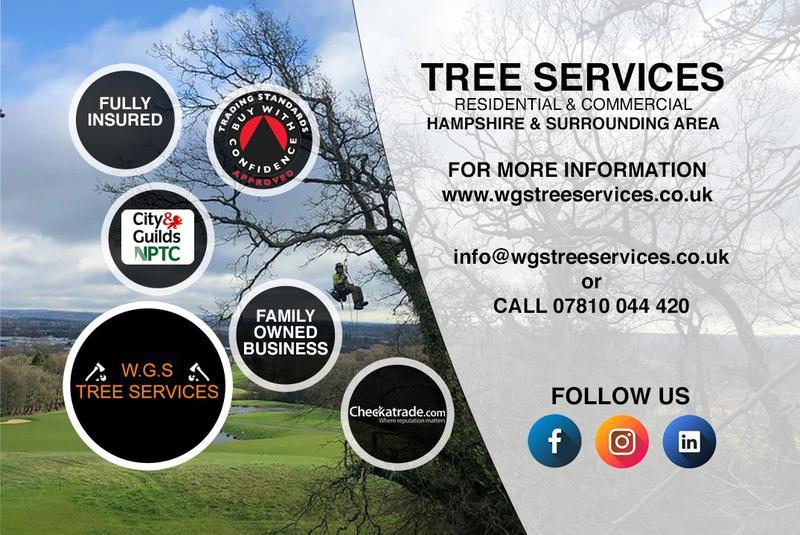 Image 4 - Experts in Arboriculture.