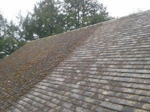 Image 12 - Moss cleaning system D Mossing roof and fungus cleaning