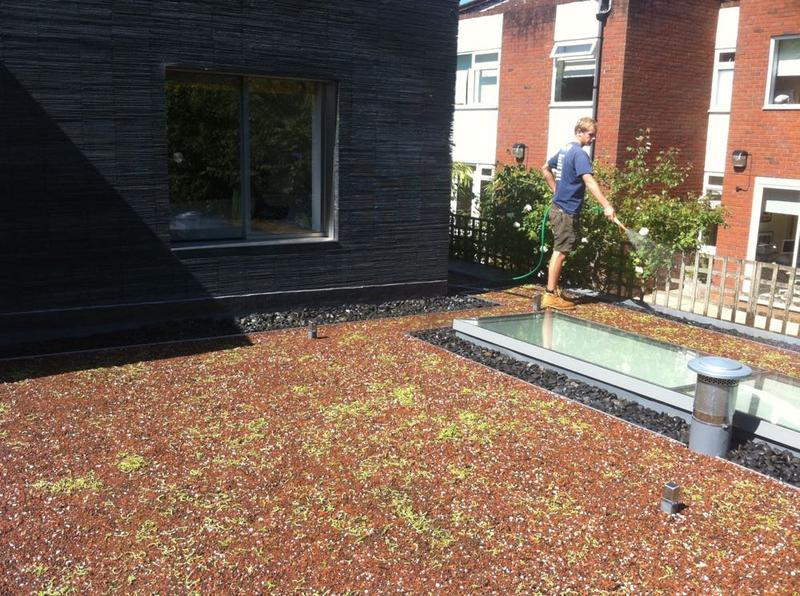 Image 17 - Soprema PVC Single Ply Membrane With Green Roof System - Highgate, London