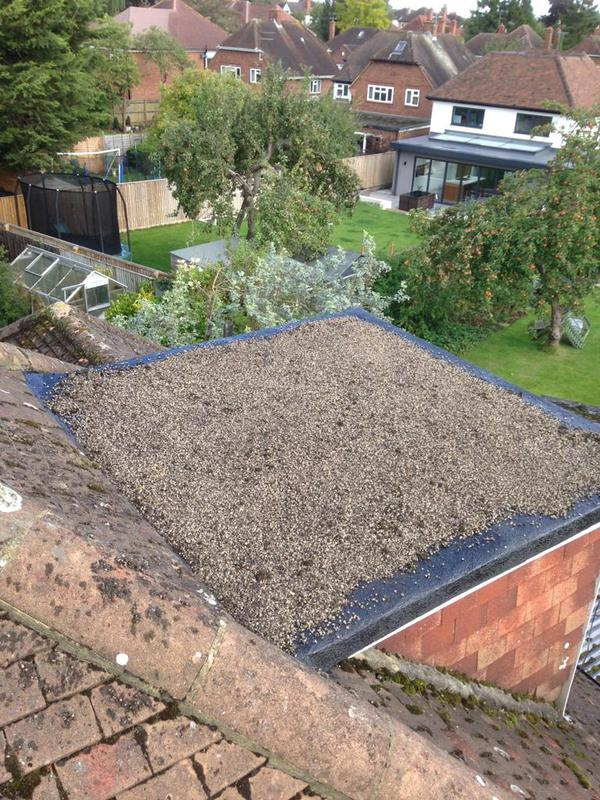 Image 28 - Flat roof sealed and chipped