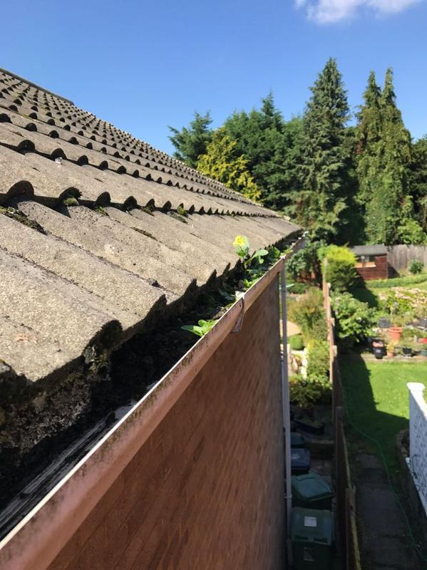 Image 12 - Blocked gutters