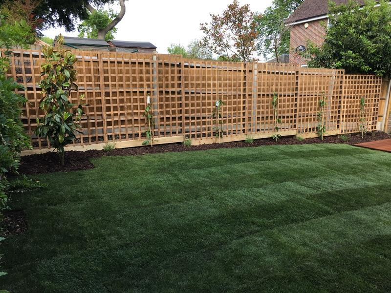 Image 44 - Turf, trellis and planting