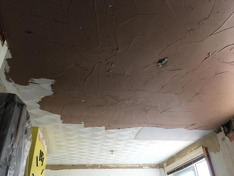 Image 56 - Ceiling during plastering