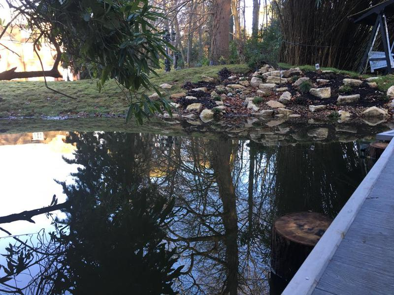 Image 14 - Pond Installation
