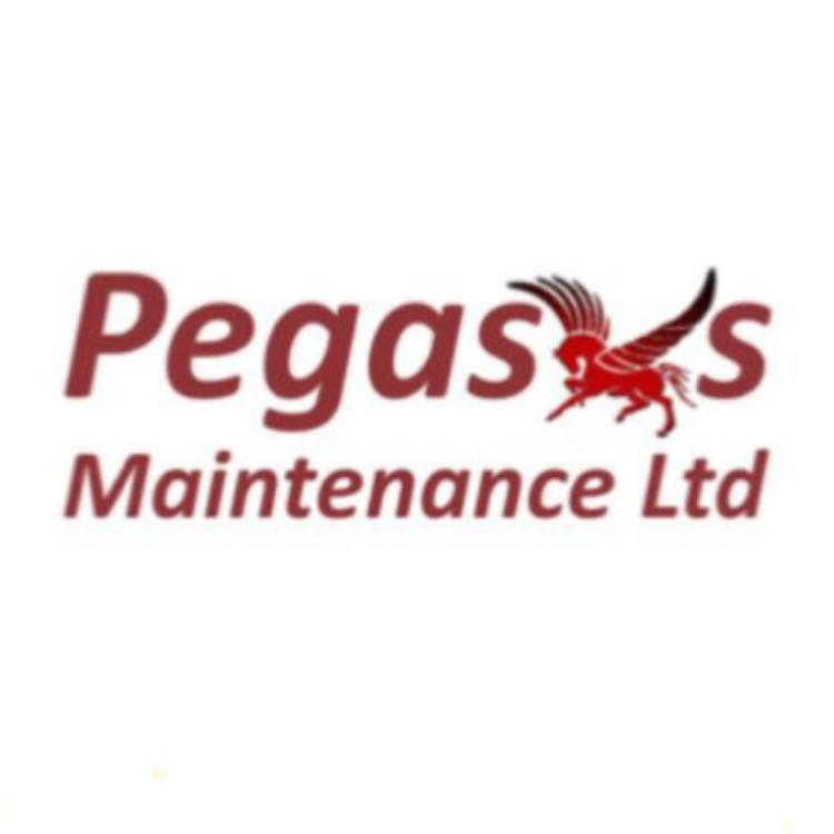 Pegasus Maintenance Ltd logo