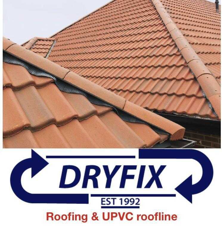 Dryfix Roofing Services logo