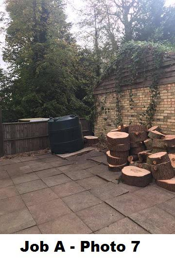 Image 13 - Finished Cedar removal with logs cut into rings for the customer to process into firewood.