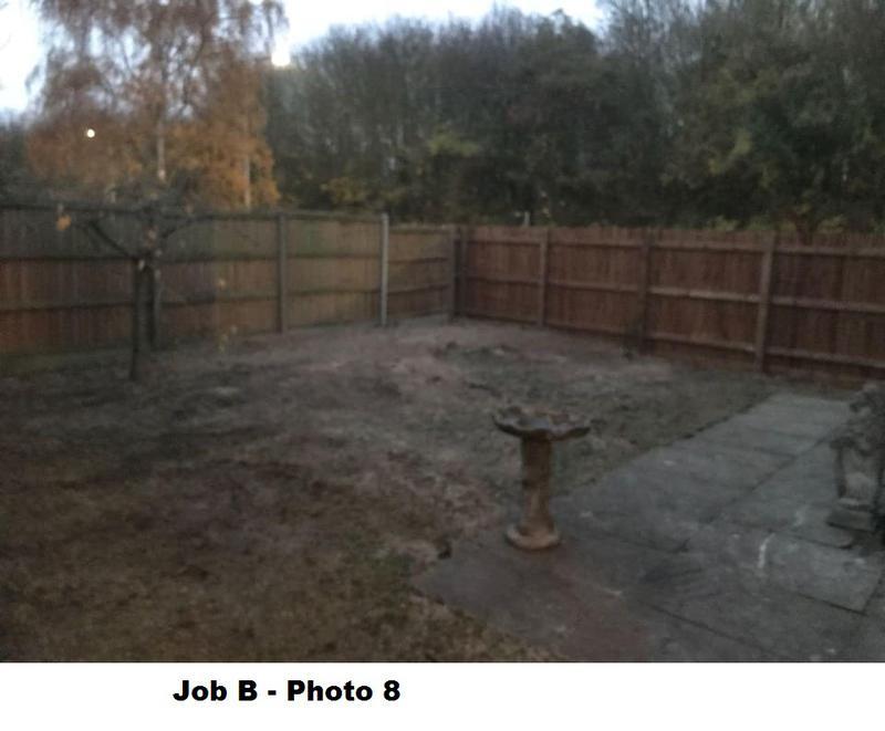 Image 21 - Finished stump grinding.