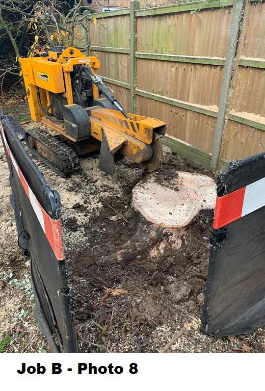 Image 22 - Stump grinding.