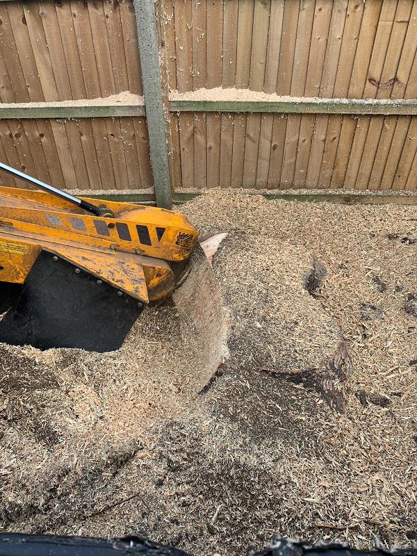 Image 24 - Stump grinding.