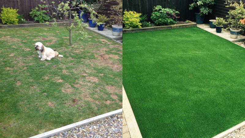 Image 178 - Resurfacing lawn