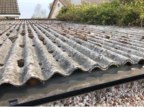 Image 17 - Asbestos roof removal